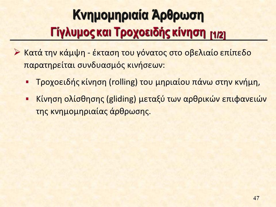 Κνημομηριαία Άρθρωση Γίγλυμος και Τροχοειδής κίνηση [2/2]